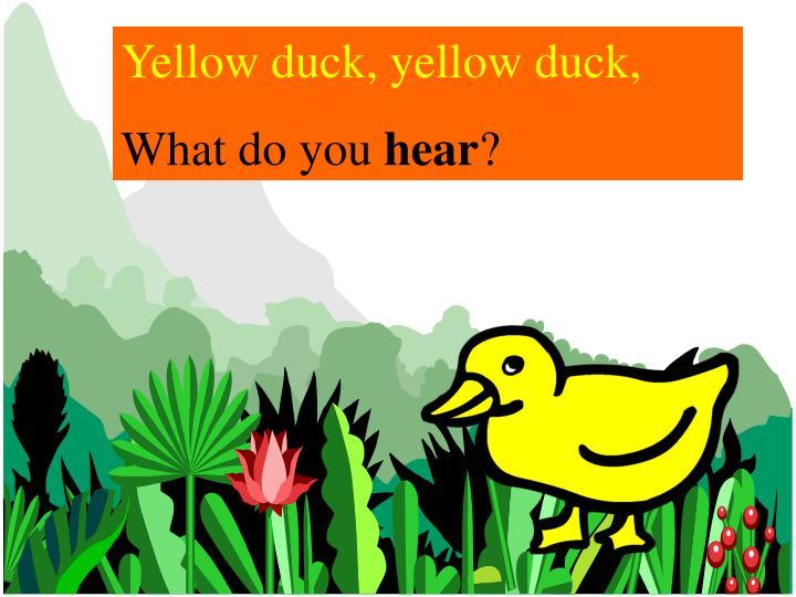 Yellow duck, yellow duck,
