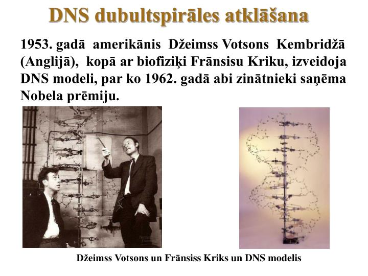 DNS dubultspirāles atklāšana