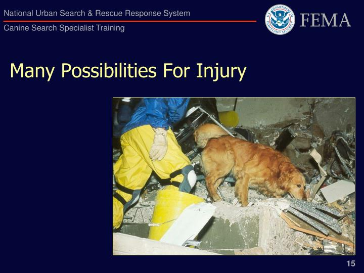 Many Possibilities For Injury