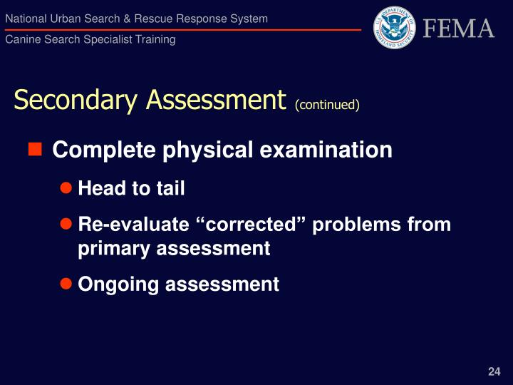 Secondary Assessment