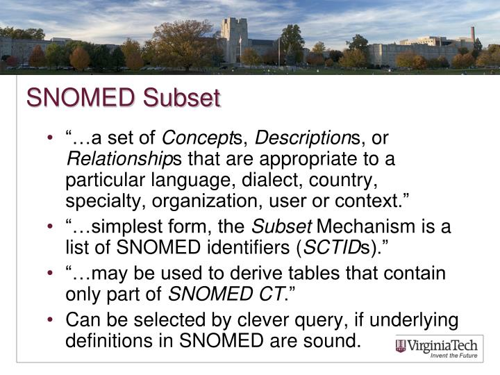 SNOMED Subset