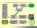 metadata base link with microdata and macrodata bases