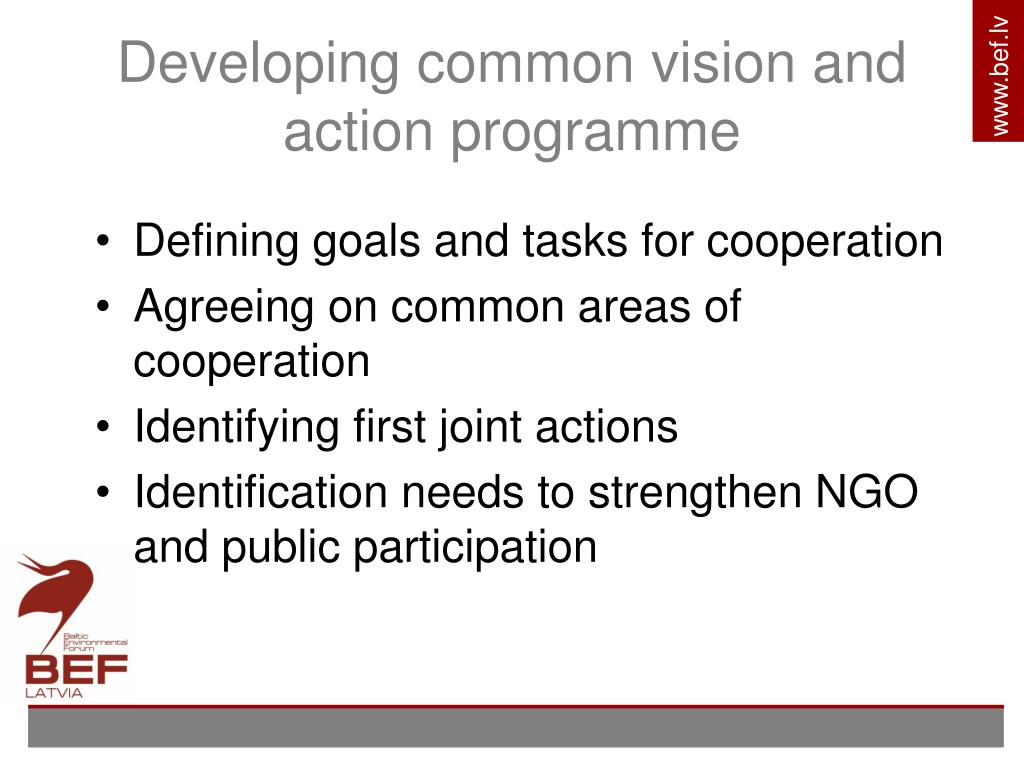 Developing common vision and action programme