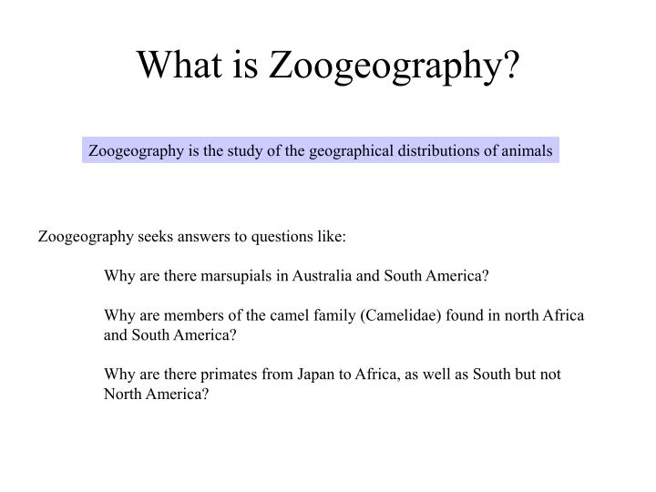What is zoogeography
