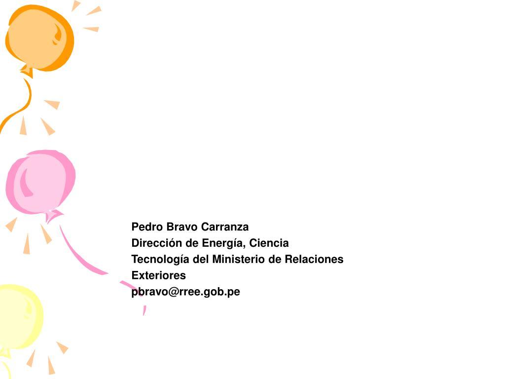 Pedro Bravo Carranza