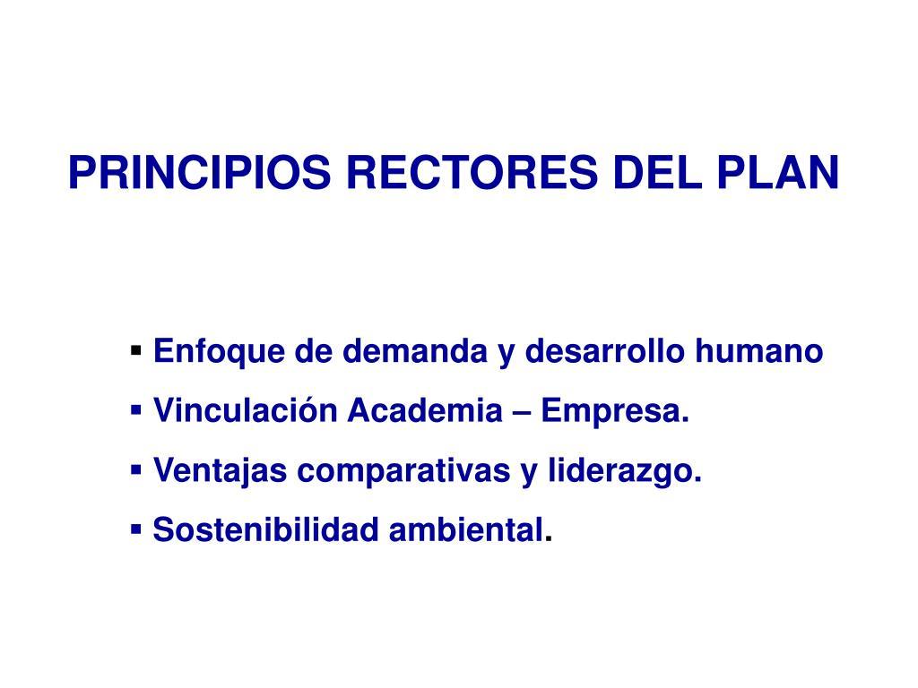 PRINCIPIOS RECTORES DEL PLAN