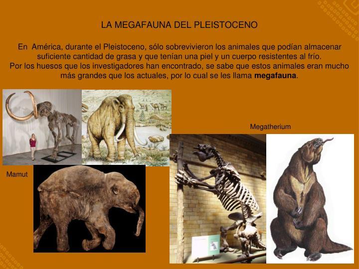 La megafauna del pleistoceno