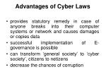 advantages of cyber laws20