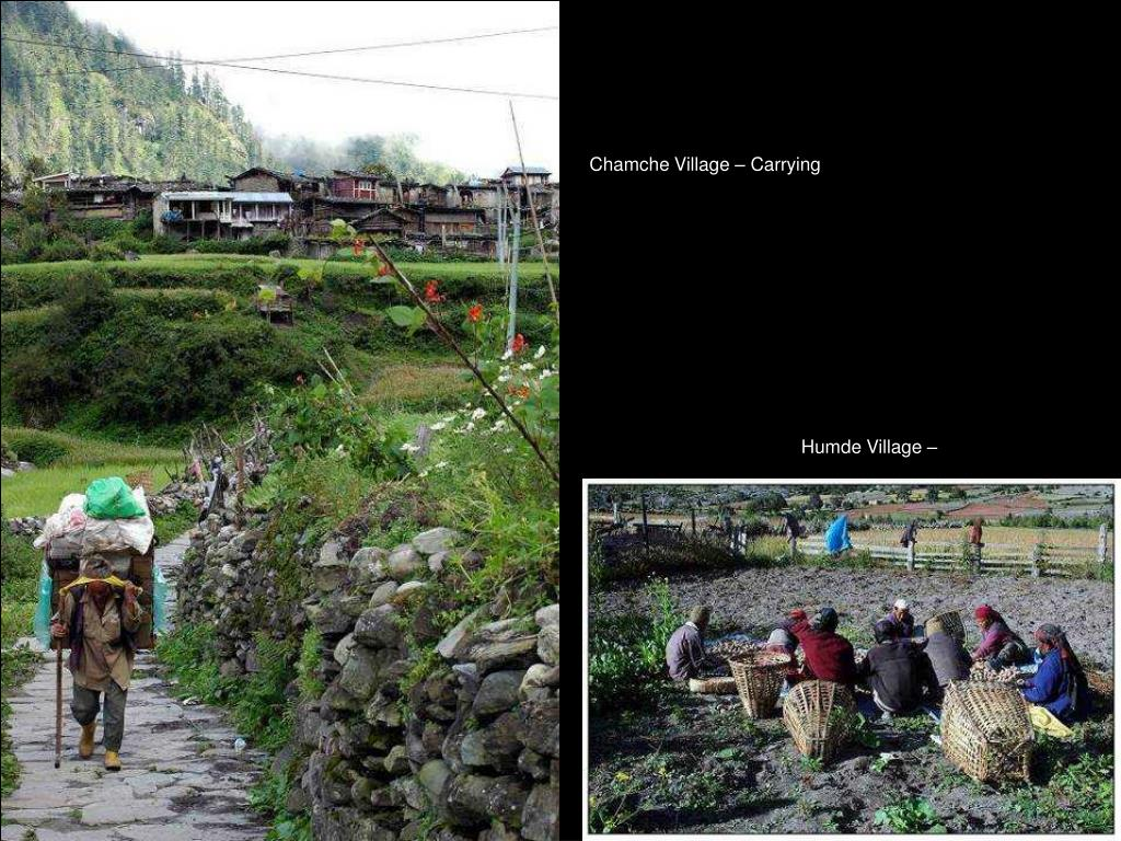 Chamche Village – Carrying