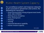 public health system capacity