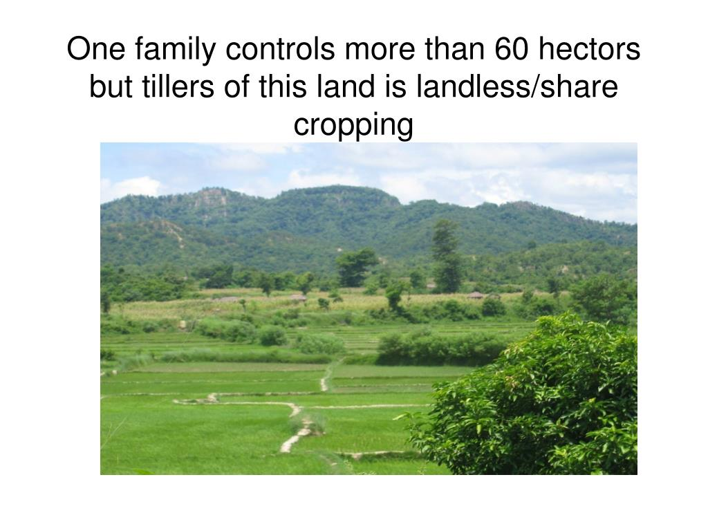 One family controls more than 60 hectors but tillers of this land is landless/share cropping