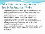 mecanismo de captaci n de los bifosfonatos 99m tc