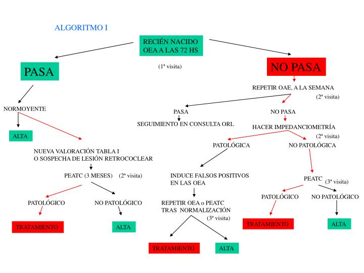 ALGORITMO I