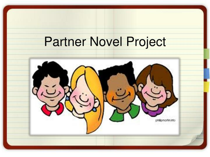 partner novel project n.