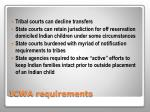 icwa requirements1