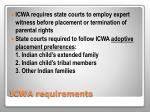 icwa requirements2