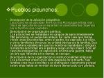 pueblos picunches