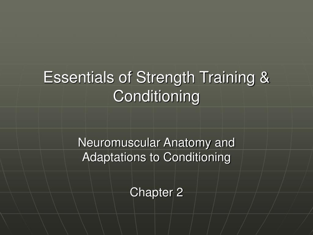 essentials of strength training conditioning l.