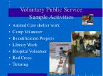 voluntary public service sample activities