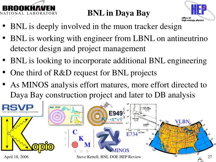 BNL in Daya Bay