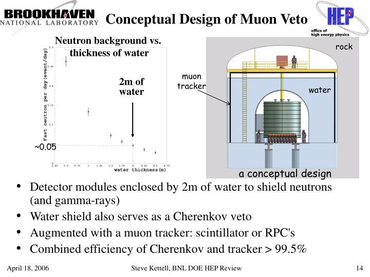 Conceptual Design of Muon Veto