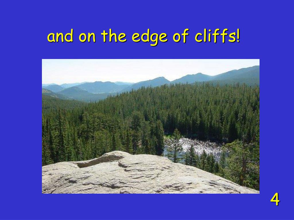 and on the edge of cliffs!