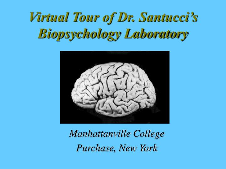 virtual tour of dr santucci s biopsychology laboratory n.