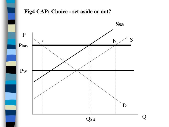 Fig4 CAP: Choice - set aside or not?