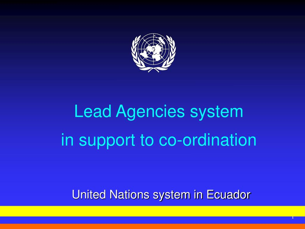 lead agencies system in support to co ordination l.
