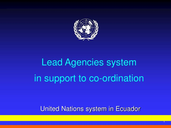 Lead agencies system in support to co ordination