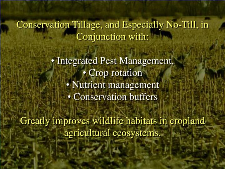 Conservation Tillage, and Especially No-Till, in