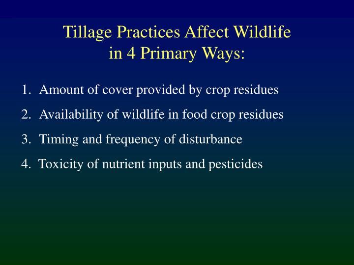 Tillage Practices Affect Wildlife
