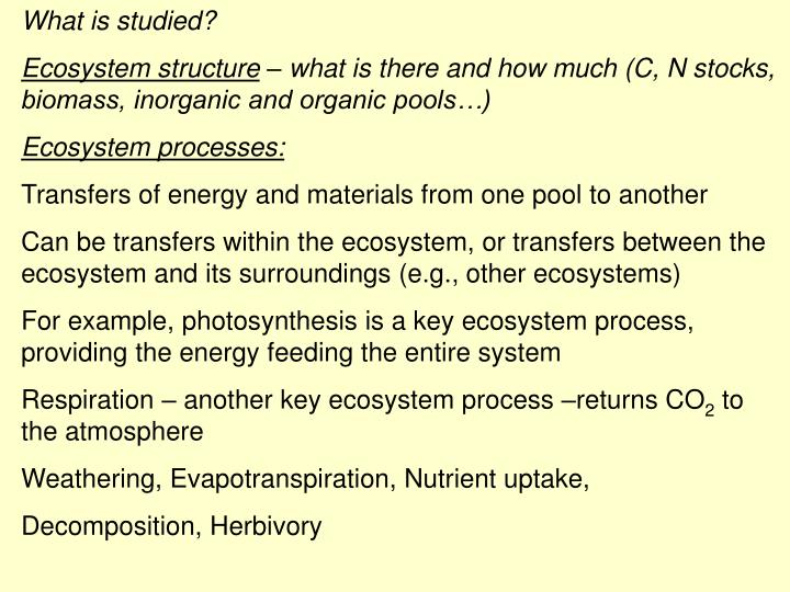 What is studied?