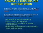 comesa launching the customs union18