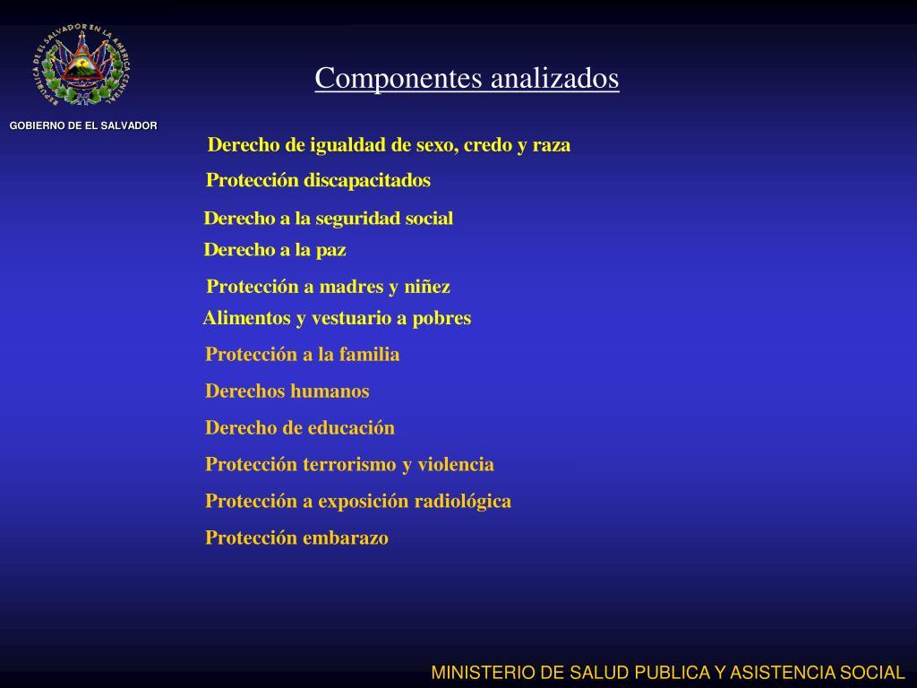 Componentes analizados