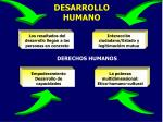 desarrollo humano14