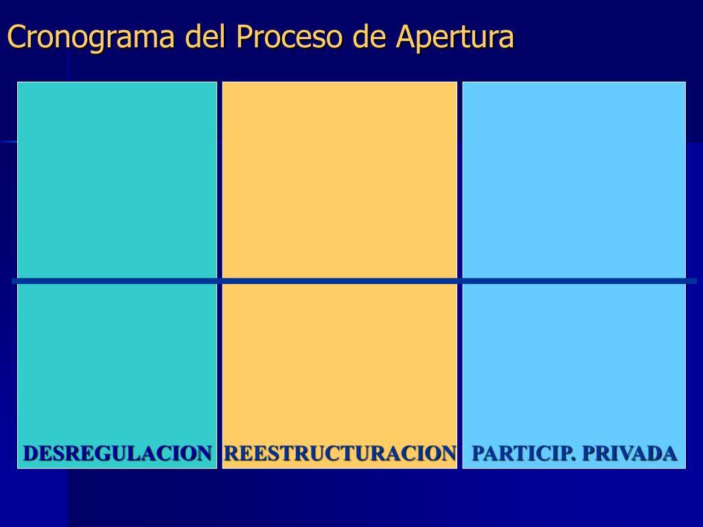 Cronograma del Proceso de Apertura