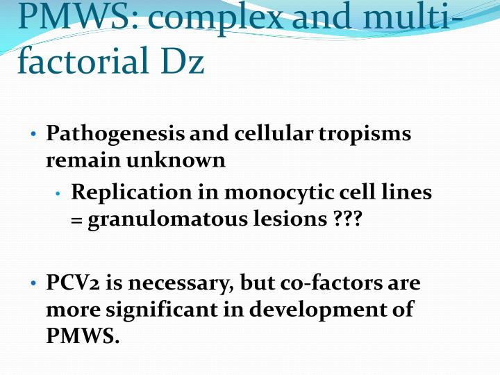 PMWS: complex and multi-factorial Dz