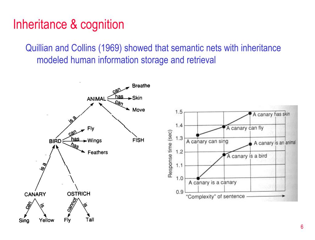 Inheritance & cognition