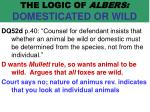 the logic of albers domesticated or wild56