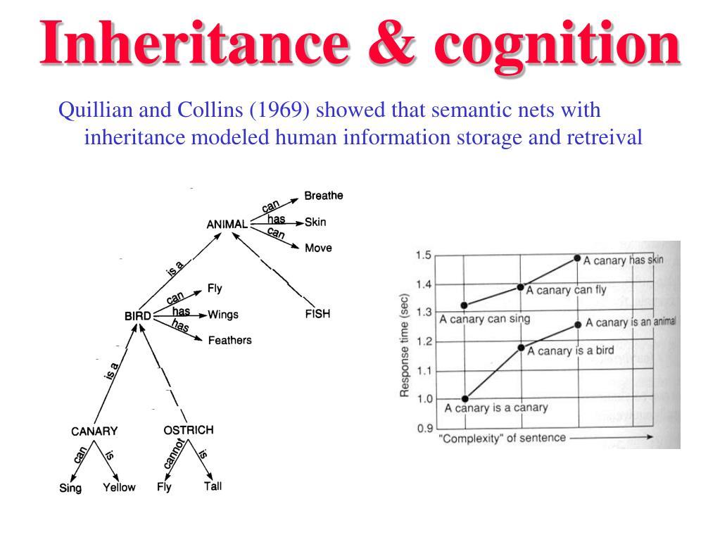Inheritance & cognition