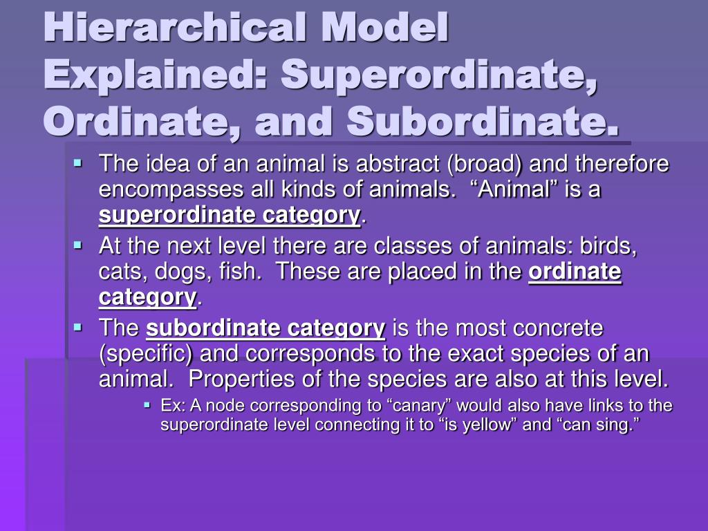 Hierarchical Model Explained: Superordinate, Ordinate, and Subordinate.
