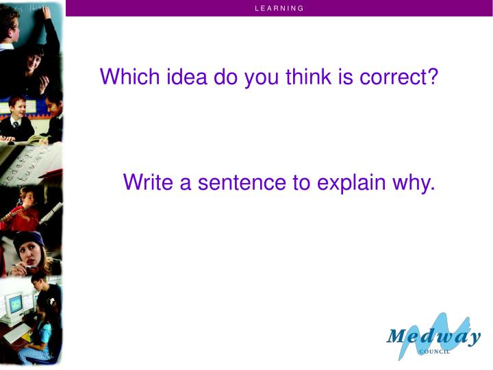 Which idea do you think is correct?