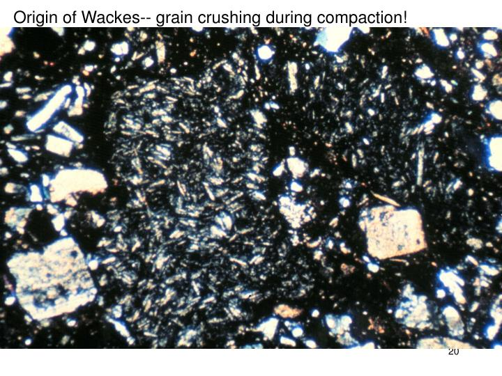 Origin of Wackes-- grain crushing during compaction!