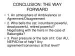 conclusion the way forward