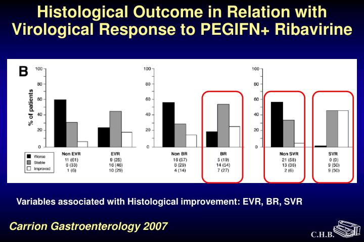 Histological Outcome in Relation with Virological Response to PEGIFN+ Ribavirine