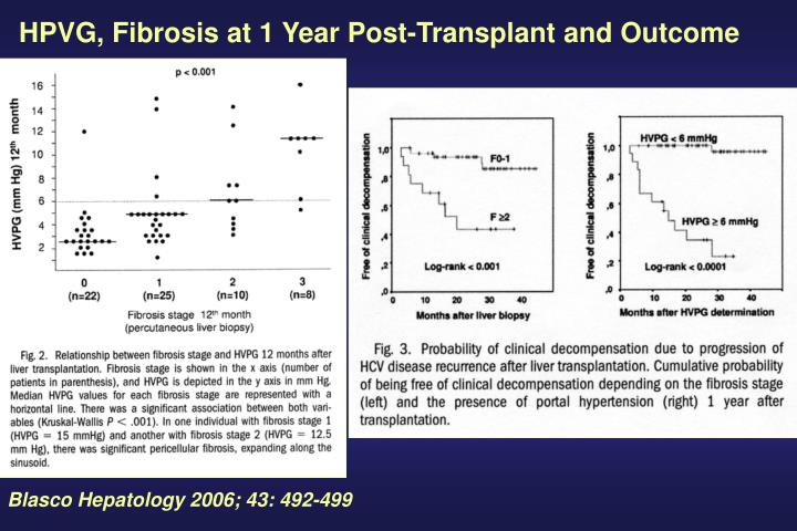 HPVG, Fibrosis at 1 Year Post-Transplant and Outcome
