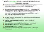 national preventive disaster risk reduction mechanisms functioning structures
