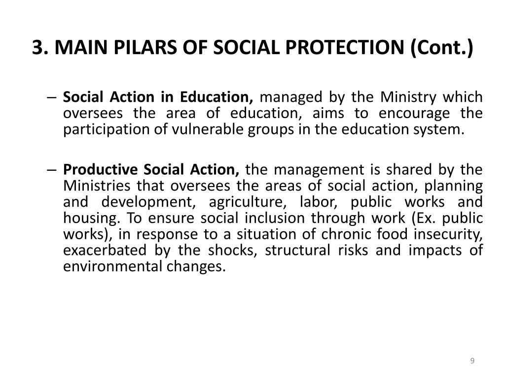 3. MAIN PILARS OF SOCIAL PROTECTION (Cont.)