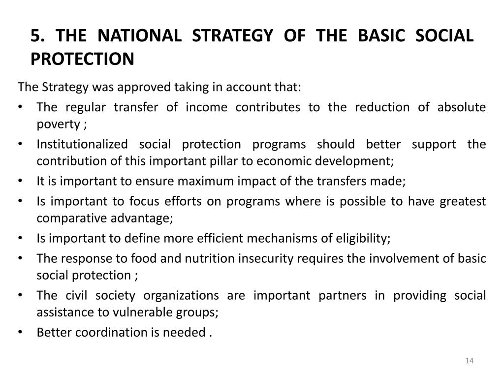 5. THE NATIONAL STRATEGY OF THE BASIC SOCIAL PROTECTION